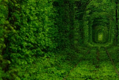 tunnel-of-love_BonjourLife.com2_