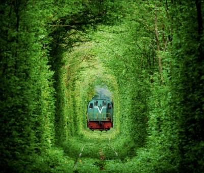 TunnelofLove1